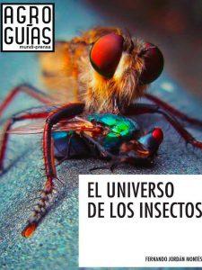 universo-de-insectos